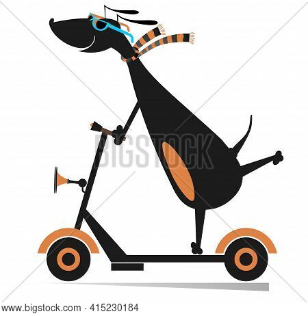 Cartoon Dog Rides On Scooter Isolated Illustration.  Dachshund Riding Ecologically Clean Urban Vehic