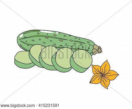 Green Zucchini With Slices And A Yellow Flower. Isolated On A White Background. Vector Illustration.
