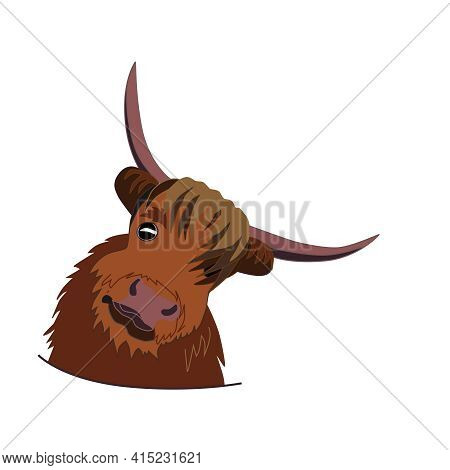 Shaggy Head Of Cute Funny Bull, Symbol Of 2021, Vector Illustration