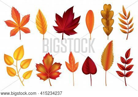 Autumn Leaves. Symbols With Watercolor Texture, Vector Illustration. Isolated Design Elements Set Of