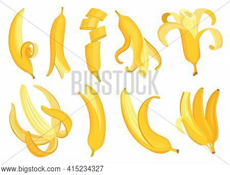 Cartoon Bananas. Tropical Fruits, Banana Snack Or Vegetarian Nutrition. Fruit And Ripe Sweet Food. V