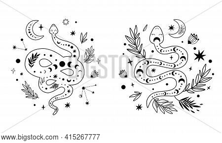 Floral Snake Set. Celestial Serpent Moon Phase, Flowers, Leaves, Crescent. Mystical Hand Drawn Graph