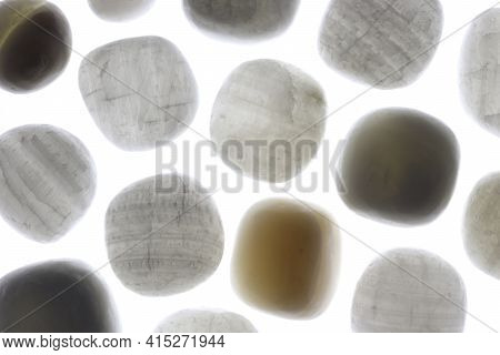 Tridacna Rare Jewel Stones Texture On White Light Background. Sparse Mineral Pebbles Background.