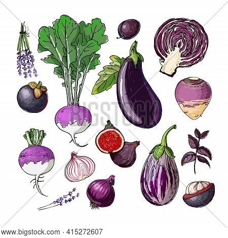 Purple. Vector Food. Colored Vegetables And Fruits On A White Background. Eggplant, Cabbage, Turnips