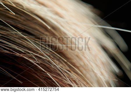 Bright Brown Hair Ends