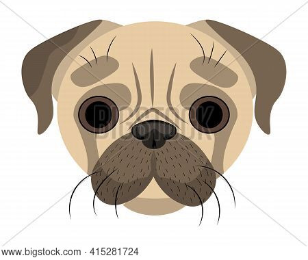 Drawing Of The Pug's Muzzle. Dog Face, Cute Pug. A Simple Drawing Of A Dog.