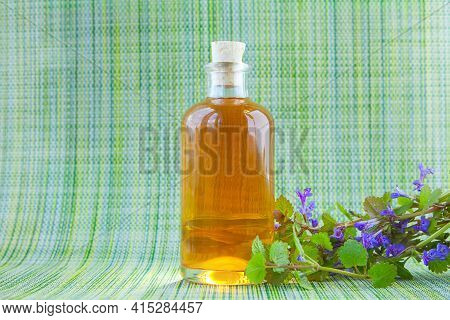 Bugleherb Essential Oil In A Beautiful Bottle On The Green Background