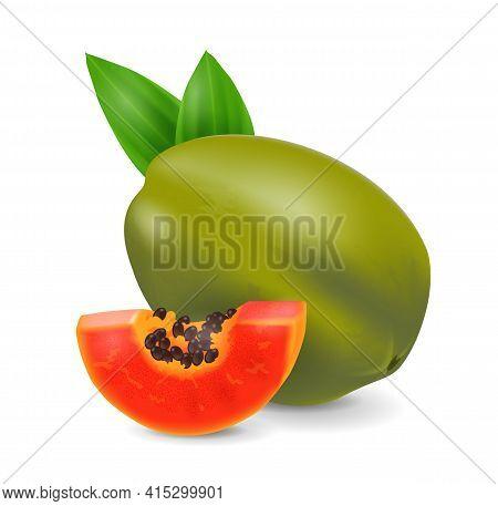 Papaya Fruit - Exotic Fruits Collection, Realistic Design Vector Illustration Close-up