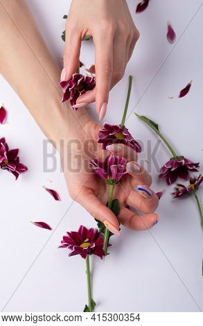 Beautiful Sophisticated Female Hands With Pink Flowers On A White Background. Hand Care Concept, Ant