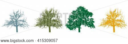 Four Season Of Tree, Silhouette Tree With Foliage And Bare Tree. Vector Illustration