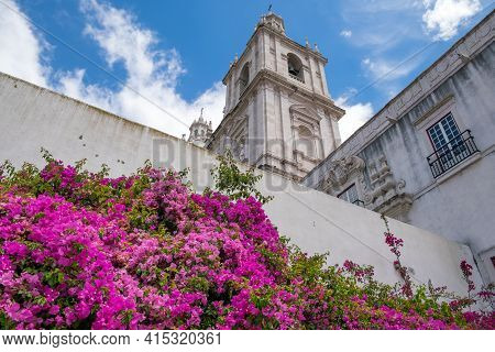 Flowers On Background View In Pantheon And The Aflama, Lisbon The Old City Center.