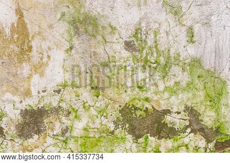 Green Dirty Mold On An Old Cracked Concrete Wall Of An Abandoned Building Texture Background.