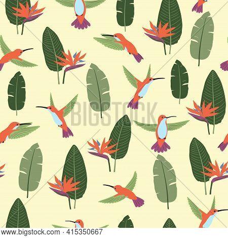 Seamless Hummingbirds And Strelitzia Flowers Pattern. Vector Summer Tropic Background.