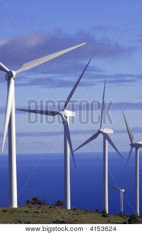 Eolic Generators In A Wind Farm