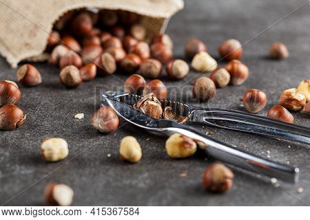 Closeup Selective Focus Image Of Hazelnuts In Shells Scattered From A Vintage Burlap Sack Onto Dark