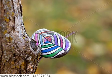 Leaving Vibrant Painted Rocks A.k.a Kindness Rocks In Parks And Public Places Is A New Phenomenon An