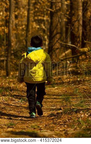 A Boy Wearing A Winter Coat With A Hood Is Walking Alone In A Hiking Trail Covered With Fallen Autum