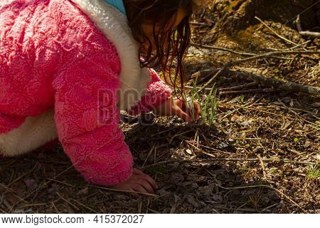 A Cute Little Girl Wearing Pink Fluffy Winter Coat Is Kneeling To The Ground In A Forest To Observe