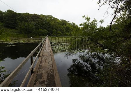 Famous Lily Ponds Of Bosherton, Wales. A Narrow Bridge With Wooden Railing On One Side Goes Over The