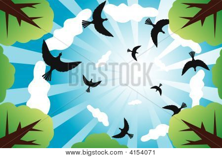 Sunny Sky With Birds And Clouds