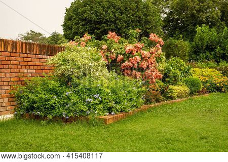 Back And Front Yard English Cottage Garden, Smooth Green Grass Lawn, Colorful Flowering Plant And Or