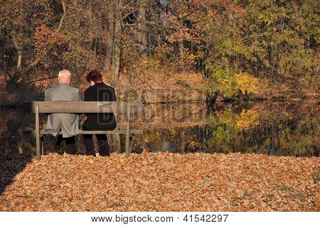 Seniors In A Park
