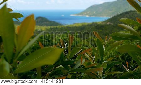Majestic View Of Tropical Rain Forest Landscape With Volcanic Mountains Above The Lush Green Jungle