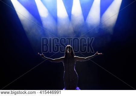 Singer Performing On Stage With Lights. Concert. View From The Auditorium.
