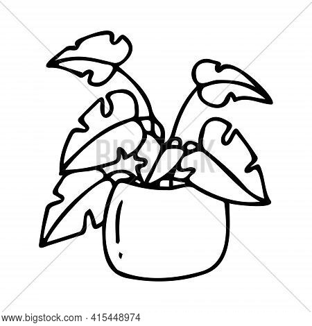 Vector Pot With A Large Flower Isolated On A White Background In Doodle Style. A Flower With Large L