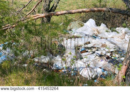 Garbage Dump In The Woods. The Trash In The Nature Of People, Household Garbage In The Woods. Plasti