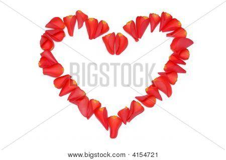Heart From Rose Petals