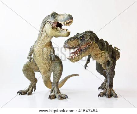 A Tyrannosaurus Pair On A White Background