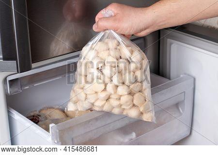 Frozen Dumplings In Freezer In A Plastic Bag. Frozen Dumplings (pelmeni), A Dish Of Dough And Flour.
