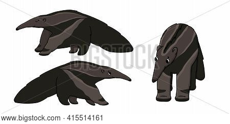 Set Of Three Brown Cute Beautiful Outline Cartoon Isolated Ant-eaters Or Anteaters. Vector Animals S