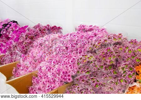 Boxes With Various Varieties Of Bouquets Of Flowers In The Wholesale Warehouses Of The Plant And Flo