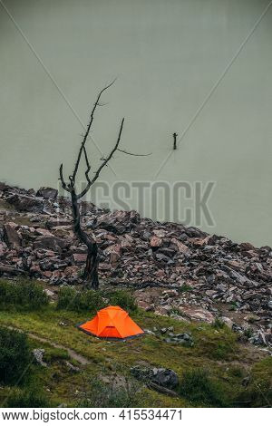 Scenic Landscape With One Vivid Orange Tent And Beautiful Dead Tree Near Mountain Lake Water. Atmosp