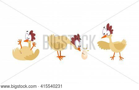 Funny Hen In Different Situations Set, Farm Bird Cartoon Character Cartoon Vector Illustration