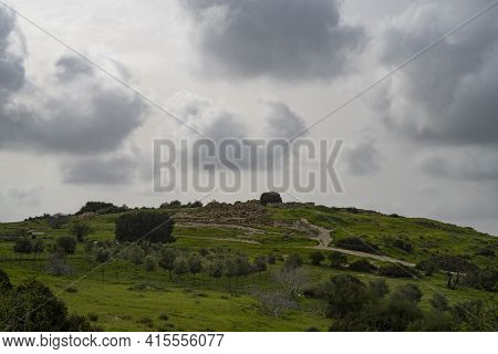 A Young Olive Grove At The Bottom Of The Hill On Which The Khirbat Umm Burj Archeological Site Is Lo