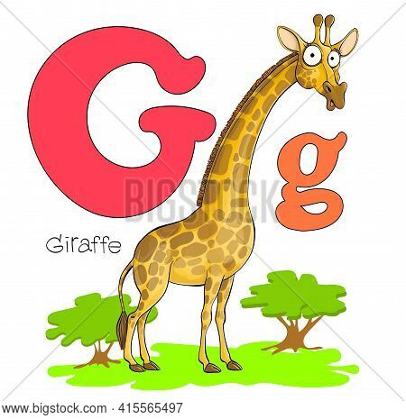 Vector Illustration. Alphabet With Animals. Big And Capital Letter G With A Picture Of A Bright Cute