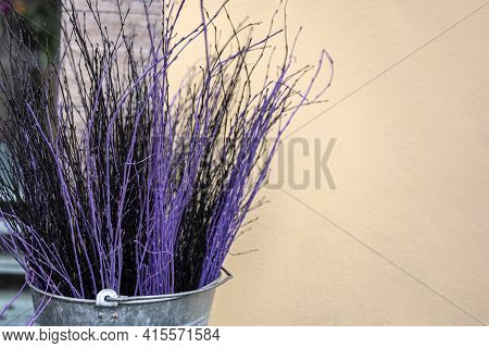 Colored Branches For Decorations. Branches Of Different Colors For Easter Decoration And Bouquet Dec