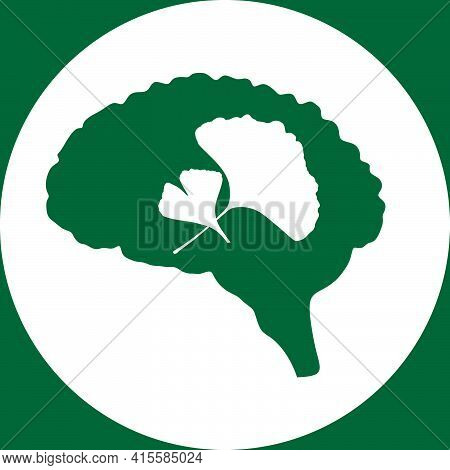 Brain And Ginkgo Leaves Icons Vector Illustration, Ginkgo Biloba Leaves