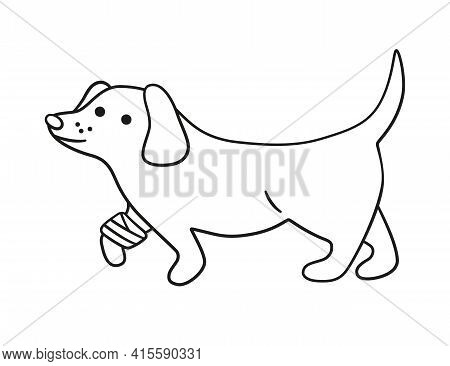 A Sick Dog With A Wounded Paw In Bandages In Doodle Style. Unhealthy Puppy With Splinting Leg. Hand