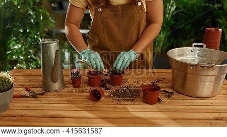 Girl Working As A Gardener In A Home Garden. Home Garden Concept. Girl At The Table With Buckets And