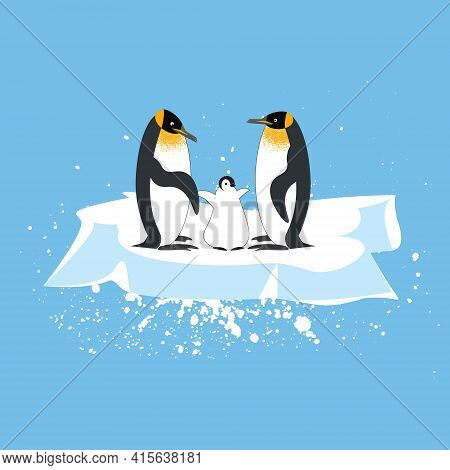A Family Of Royal Penguins With A Baby Penguin On An Ice Floe