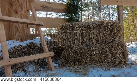 Hay Briquettes Lie On The Snowy Ground. There Is A Wooden Staircase Nearby. At The Back Is A Plank F