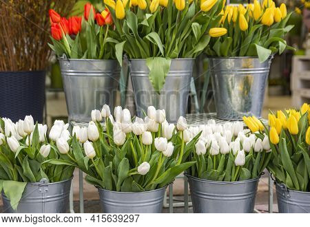 Buying Flowers In The Spring For The Holiday. The Cost Of Flowers, Tulips. Tulips Of Different Color