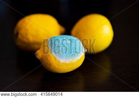 Three Whole Yellow Bright Lemons On A Dark Wooden Table. One Lemon In The Middle With Light Blue Tex