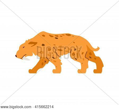 The Saber-toothed Tiger Is A Predatory Wild Animal Of Prehistoric Stone Age.