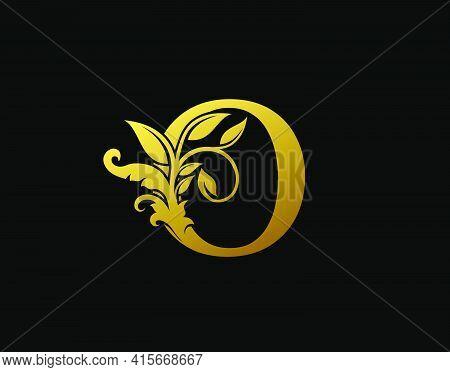 Luxury O Letter Design. Graceful Ornate Icon Vector Design. Vintage Drawn Emblem For Book Design, Br