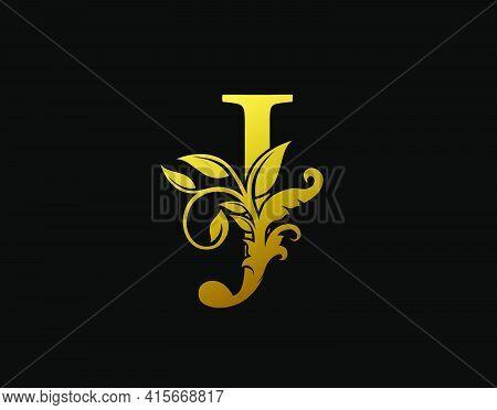 Luxury J Letter Design. Graceful Ornate Icon Vector Design. Vintage Drawn Emblem For Book Design, Br